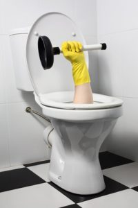 unusual plumber with plunger (joke)
